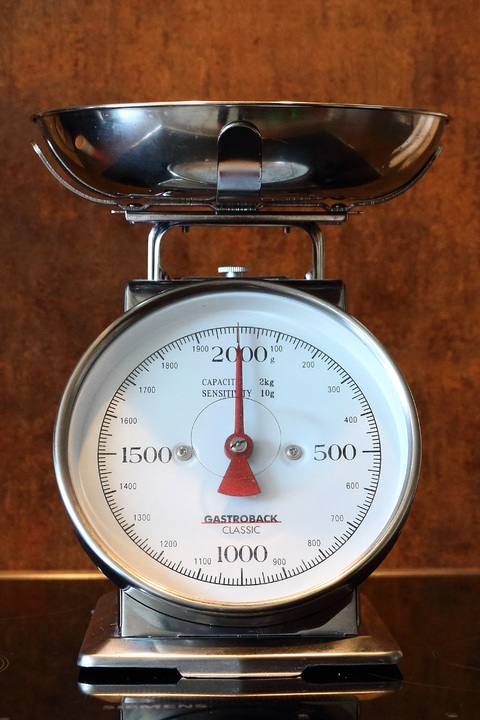 image of a silver Portioning Scale
