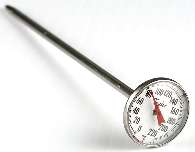 image of a thermometerused to measure the internaltemperatureof meat