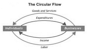 The circular flow model which shows the connection between households and firms.