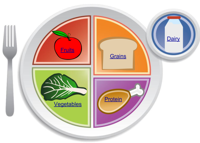 An image of the Federal Governments new and improved tool of nutritional communication.