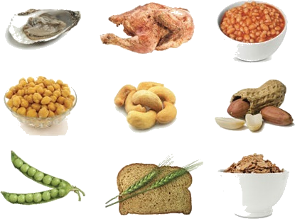 An image of nine different foods high in zinc