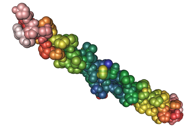 Collagen molecule represented by tightly packed spheres of varying colors