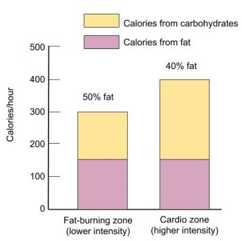 Graph of calories per hour, y axis, and and 2 vertical bar charts. 1 is lower intensity fat-burning zone, the other is higher intensity cardio zone.