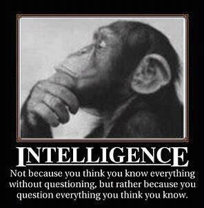 A monkey posing with his chin rested on his hand. Intelligence: not because you think you know everything without questioning, but rather because you question everything you think you know.