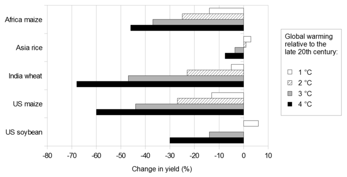 Bar chart of Change in yield (x axis from -80 to 10) with 5 sets of bars: 1. Africa maize, 2. Asia rice, 3. India wheat, 4. U.S. maize, 5. U.S. soybean.