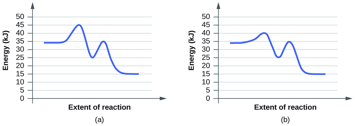 """In this figure, two graphs are shown. The x-axes are labeled, """"Extent of reaction,"""" and the y-axes are labeled, """"Energy (k J)."""" The y-axes are marked off from 0 to 50 at intervals of 5. In a, a blue curve is shown. It begins with a horizontal segment at about 34. The curve then rises sharply near the middle to reach a maximum of about 45, then sharply falls to about 25, again rises sharply to about 35 and falls to another horizontal segment at about 15. In b, the curve begins and ends similarly, but the first peak reaches about 40, drops to 25, then rises to 35 before falling to the horizontal region at about 15."""