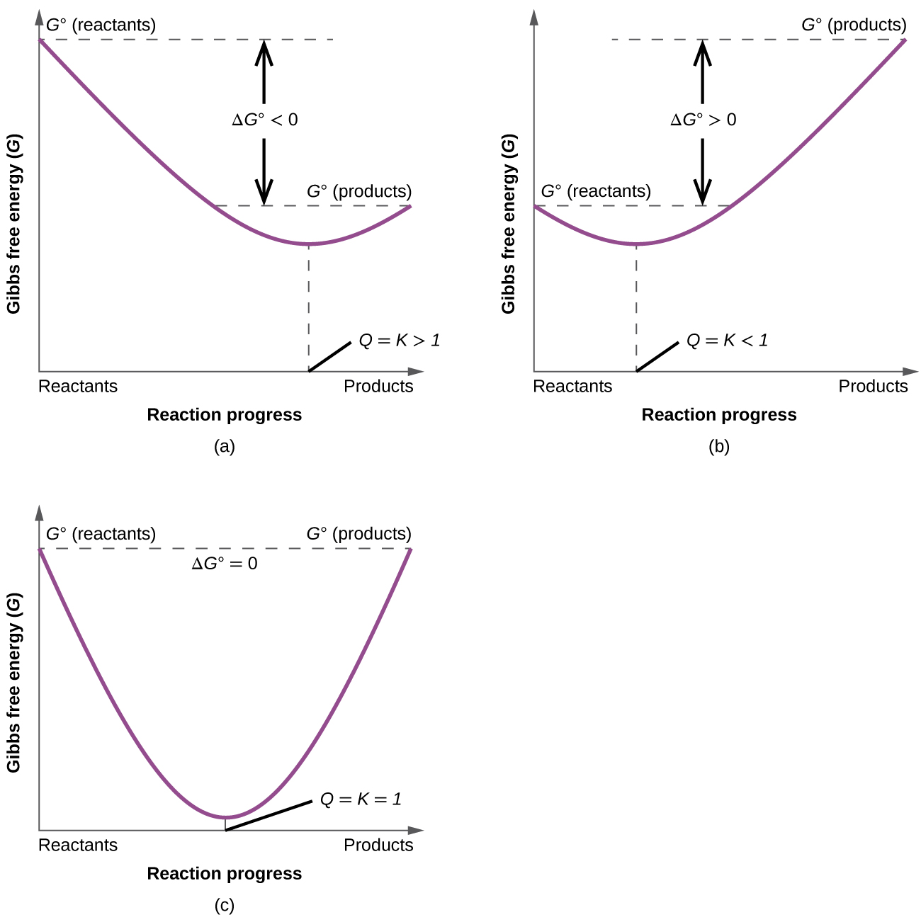 """Three graphs, labeled, """"a,"""" """"b,"""" and """"c"""" are shown where the y-axis is labeled, """"Gibbs free energy ( G ),"""" and, """"G superscript degree sign ( reactants ),"""" while the x-axis is labeled, """"Reaction progress,"""" and """"Reactants,"""" on the left and, """"Products,"""" on the right. In graph a, a line begins at the upper left side and goes steadily down to a point about halfway up the y-axis and two thirds of the way on the x-axis, then rises again to a point labeled, """"G superscript degree sign ( products ),"""" that is slightly higher than halfway up the y-axis. The distance between the beginning and ending points of the graph is labeled as, """"delta G less than 0,"""" while the lowest point on the graph is labeled, """"Q equals K greater than 1."""" In graph b, a line begins at the middle left side and goes steadily down to a point about two fifths up the y-axis and one third of the way on the x-axis, then rises again to a point labeled, """"G superscript degree sign ( products ),"""" that is near the top of the y-axis. The distance between the beginning and ending points of the graph is labeled as, """"delta G greater than 0,"""" while the lowest point on the graph is labeled, """"Q equals K less than 1."""" In graph c, a line begins at the upper left side and goes steadily down to a point near the bottom of the y-axis and half way on the x-axis, then rises again to a point labeled, """"G superscript degree sign ( products ),"""" that is equal to the starting point on the y-axis which is labeled, """"G superscript degree sign ( reactants )."""" The lowest point on the graph is labeled, """"Q equals K equals 1."""" At the top of the graph is the label, """"Delta G superscript degree sign equals 0."""""""