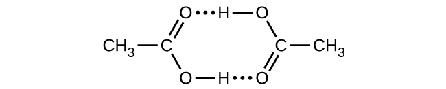 This Lewis structure shows a six-sided ring structure composed of a methyl group single bonded to a carbon, which is double bonded to an oxygen atom in an upward position and single bonded to an oxygen atom in a downward position. The lower oxygen is single bonded to a hydrogen, which is connected by a dotted line to an oxygen that is double bonded to a carbon in an upward position. This carbon is single bonded to a methyl group to its right and to an oxygen in the upward position that is single bonded to a hydrogen that is connected by a dotted line to the double bonded oxygen on the left.