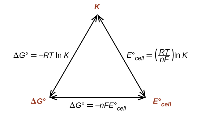 """A diagram is shown that involves three double headed arrows positioned in the shape of an equilateral triangle. The vertices are labeled in red. The top vertex is labeled """"K."""" The vertex at the lower left is labeled """"delta G superscript degree symbol."""" The vertex at the lower right is labeled """"E superscript degree symbol subscript cell."""" The right side of the triangle is labeled """"E superscript degree symbol subscript cell equals ( R T divided by n F ) l n K."""" The lower side of the triangle is labeled """"delta G superscript degree symbol equals negative n F E superscript degree symbol subscript cell."""" The left side of the triangle is labeled """"delta G superscript degree symbol equals negative R T l n K."""""""